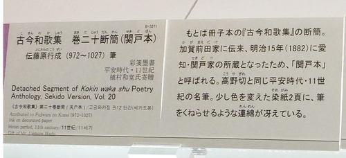 DSCF5890.JPG