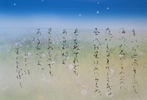 DSC_4451-500.jpg