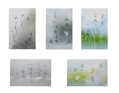 一茶俳句-1000.jpg